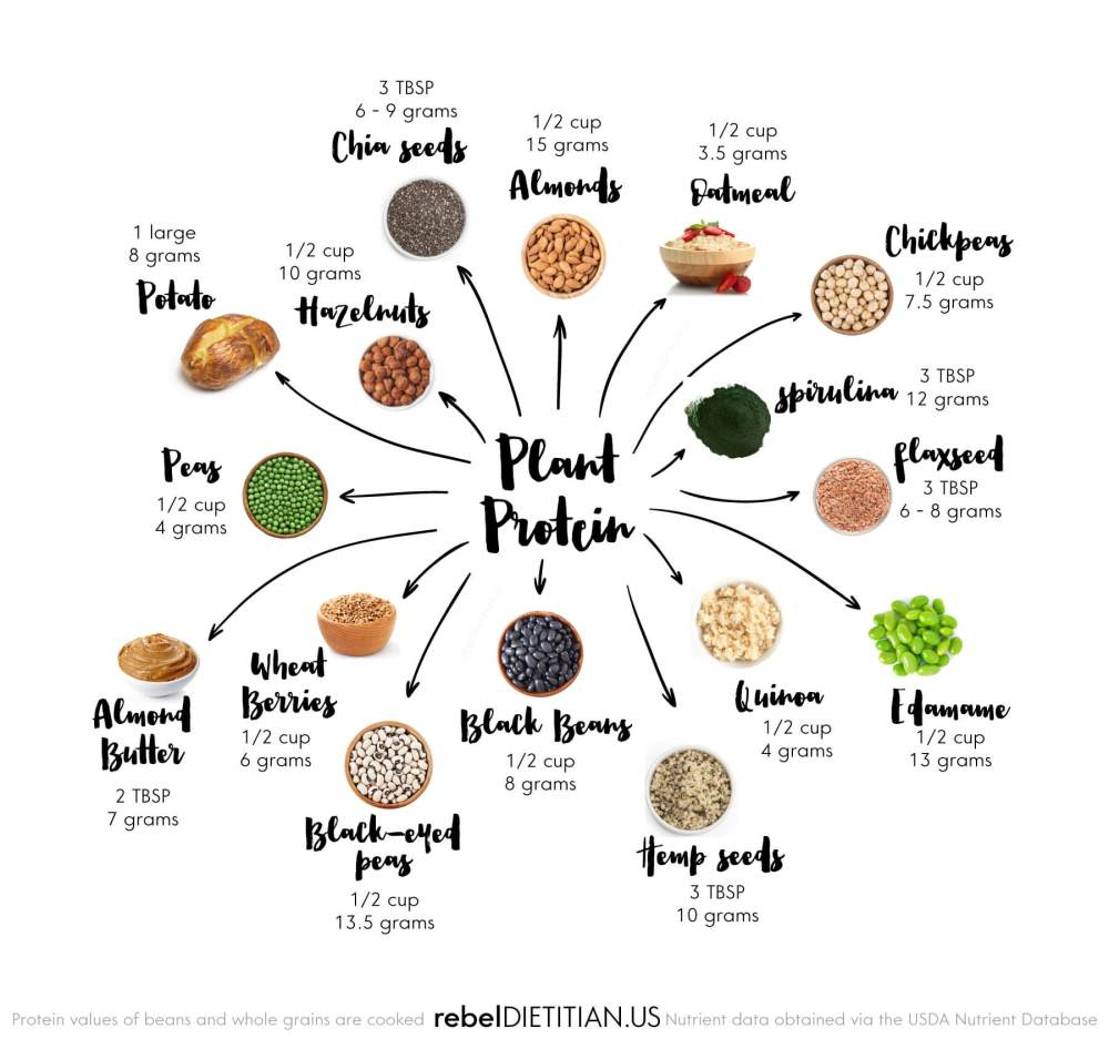 top-sources-of-plant-based-protein